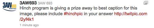 Hinchpic